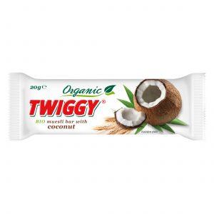 twiggy organic muesli bar with coconut